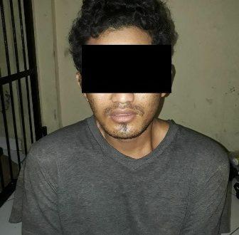 Ketgam : SU alias Warno (30)