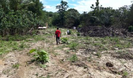 Ketgam : Lokasi yang disiapkan untuk pembangunan TPA Sampah di Desa Motewe/foto: Rasyid Suyoto